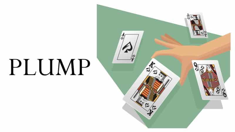 Dam kortspel 236808