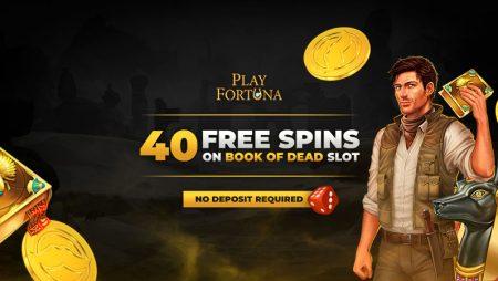 Snabbare casino recension 218995